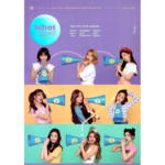 TWICE WHAT IS LOVE 5TH MINI ALBUM OFFICIAL POSTER (B VER)