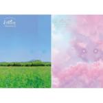 BTOB SEO EUNKWANG FOREST: ENTRANCE 1ST MINI ALBUM 2 ALBUMS SET