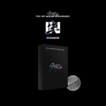 STRAY KIDS IN生 IN LIFE 1ST REPACKAGED ALBUM LIMITED EDITION
