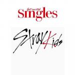 STRAY KIDS SINGLES 2021 MAGAZINE